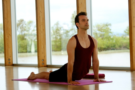 yoga anatomy workshop kreg weiss